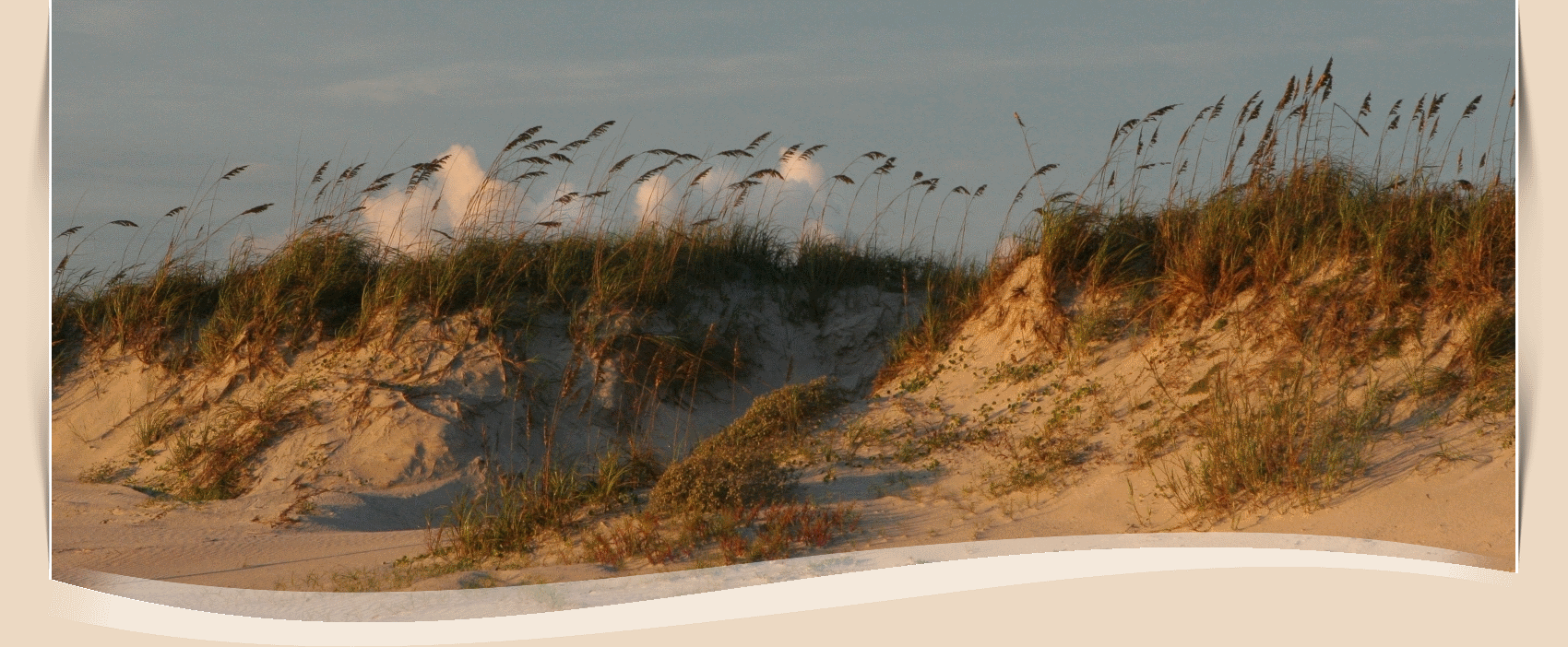 New Smyrna Beach Fl Official Website Official Website